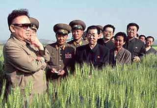 Kim Jong in a Field of Wheat